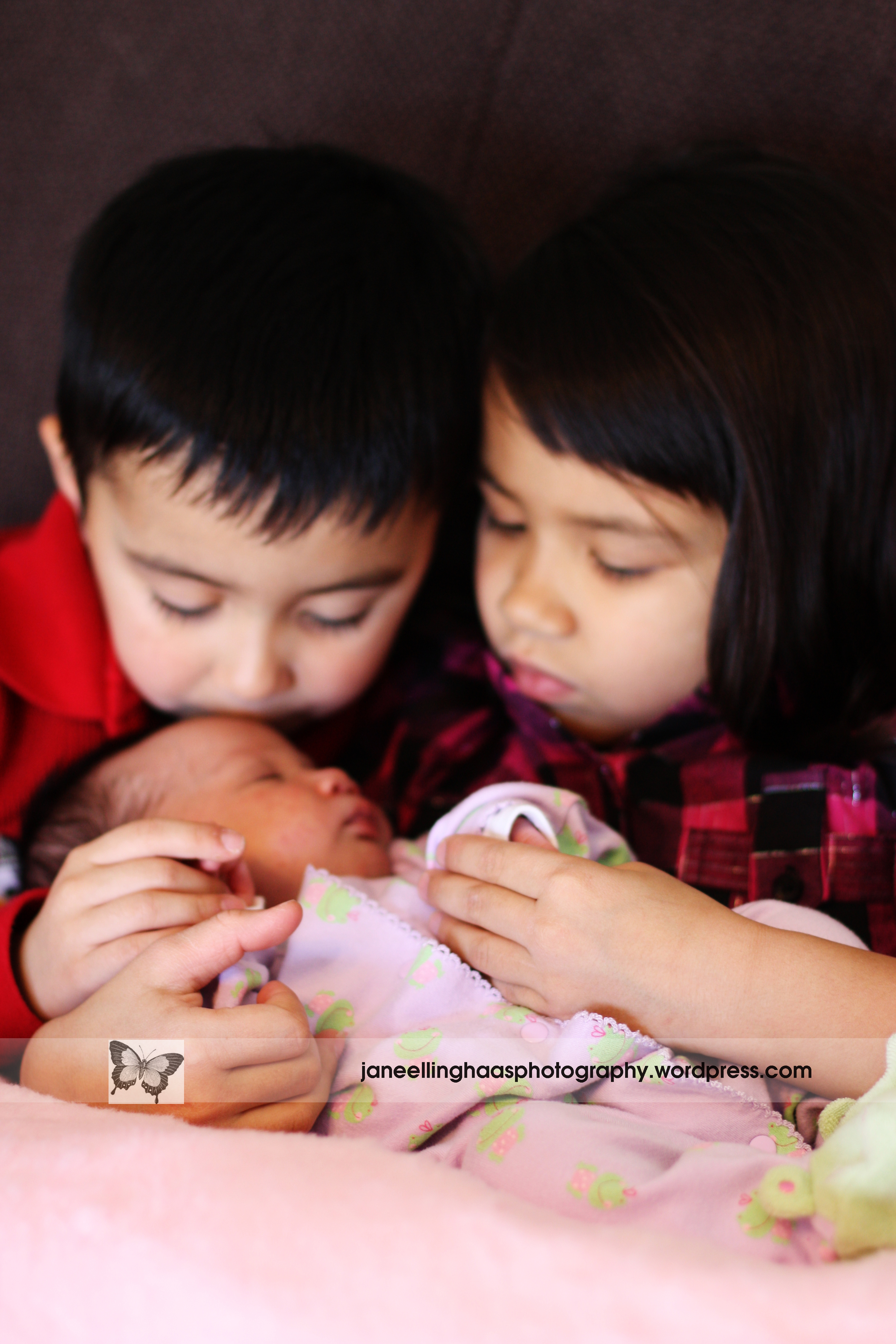 Newborn Pictures with Siblings http://jane-louise-photography.com/2010/01/17/baby-ava/